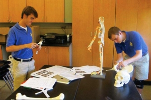 Ian Conroy and John Grab examine bones in Mrs. Shultz-Marshall's class.