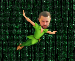 fairy barrett