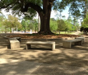 The cement benches in Founders Circle were built by maintenance crew member, Israel Batiste, and his grandfather. (photo by Jordan Kliebert)